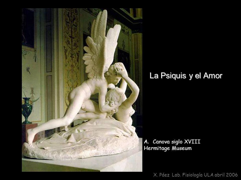 La Psiquis y el Amor Canova siglo XVIII Hermitage Museum