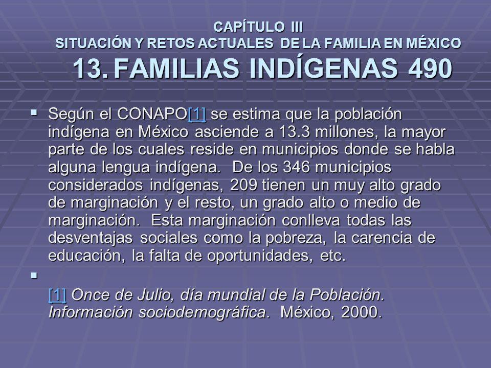 CAPÍTULO III SITUACIÓN Y RETOS ACTUALES DE LA FAMILIA EN MÉXICO 13