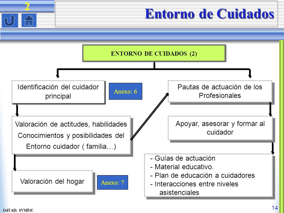 Entorno de Cuidados 2 Identificación del cuidador principal