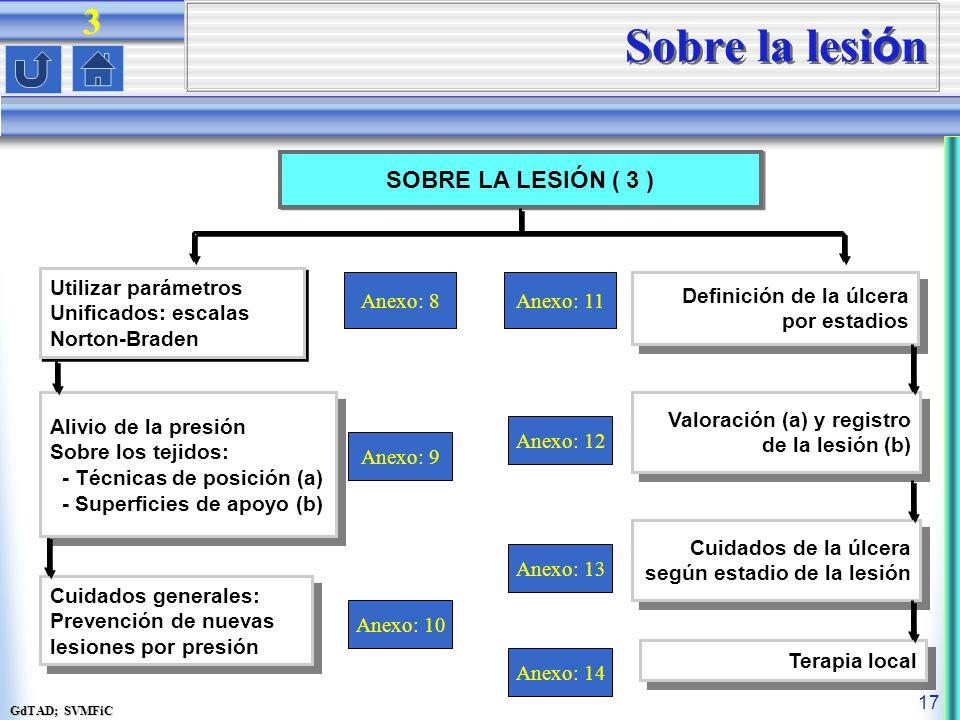 Sobre la lesión 3 SOBRE LA LESIÓN ( 3 ) Utilizar parámetros