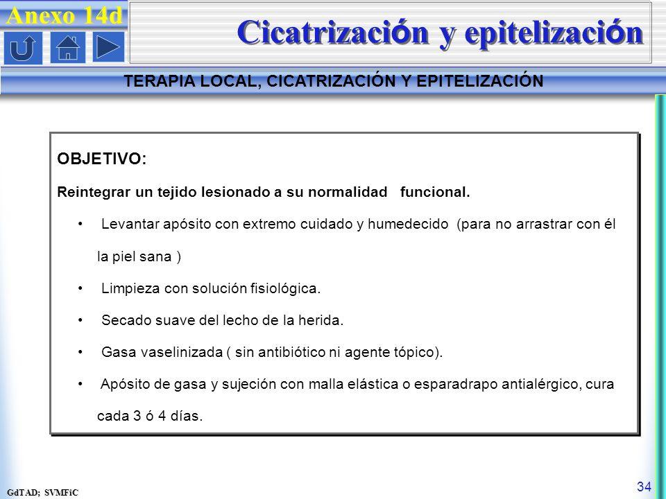 Cicatrización y epitelización