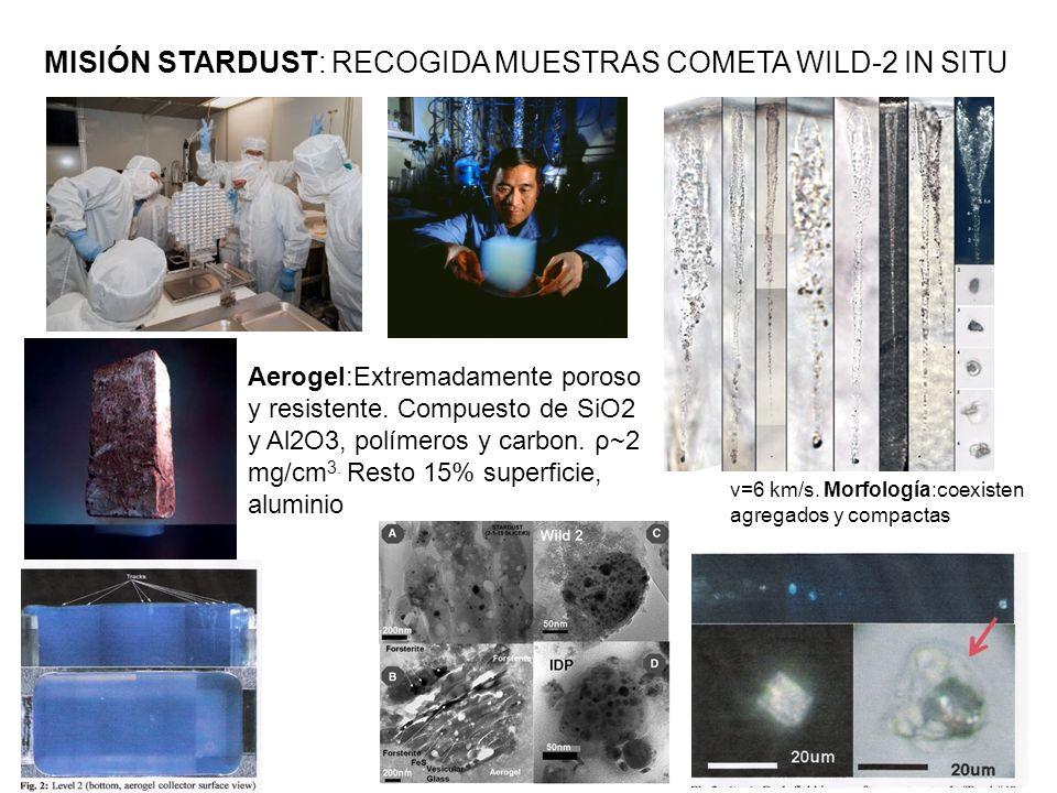 MISIÓN STARDUST: RECOGIDA MUESTRAS COMETA WILD-2 IN SITU