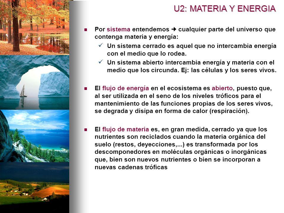 U2: MATERIA Y ENERGIA Por sistema entendemos  cualquier parte del universo que contenga materia y energía: