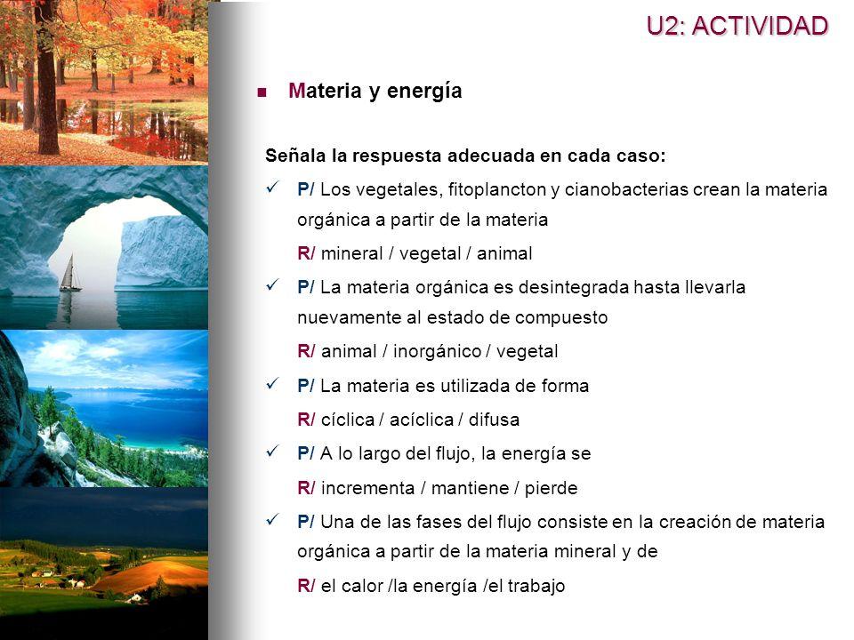 U2: ACTIVIDAD Materia y energía