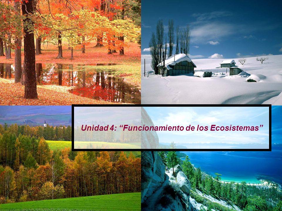 Unidad 4: Funcionamiento de los Ecosistemas