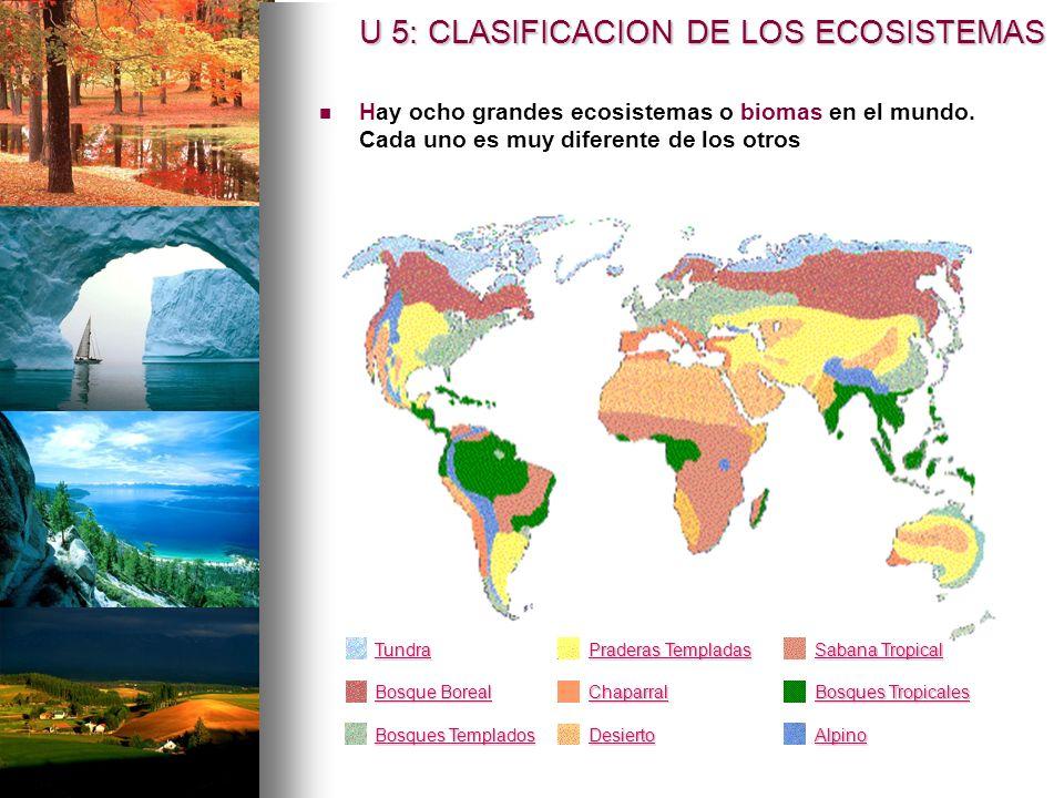 U 5: CLASIFICACION DE LOS ECOSISTEMAS