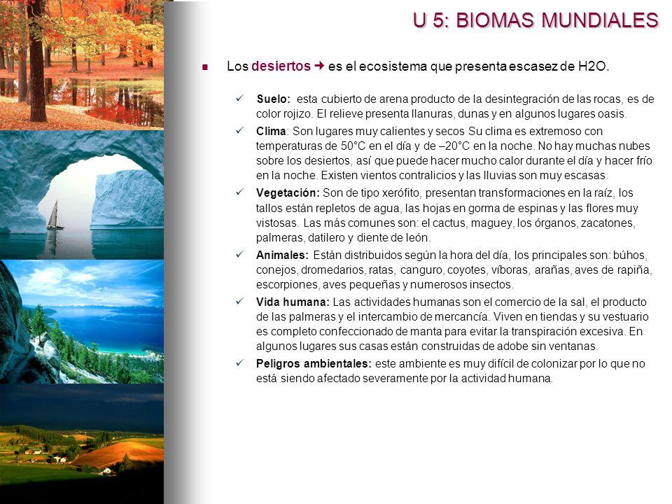 U 5: BIOMAS MUNDIALES Los desiertos  es el ecosistema que presenta escasez de H2O.