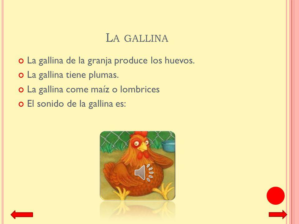 La gallina La gallina de la granja produce los huevos.