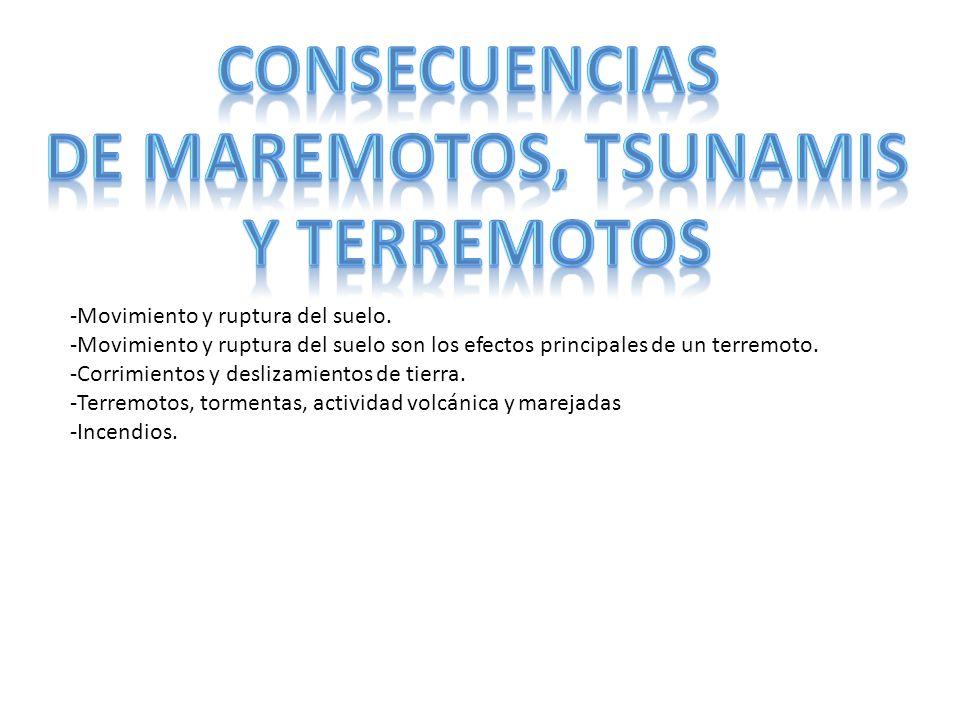 CONSECUENCIAS DE MAREMOTOS, TSUNAMIS Y TERREMOTOS