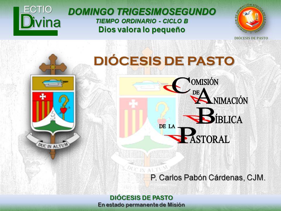 C A B P DIÓCESIS DE PASTO P. Carlos Pabón Cárdenas, CJM. OMISIÓN DE