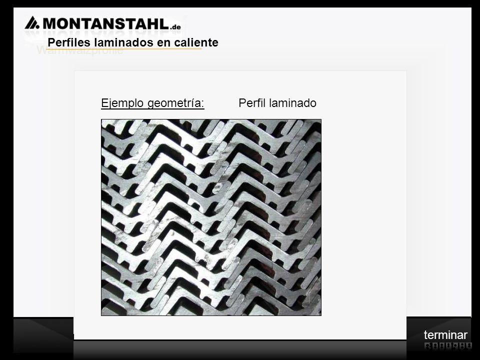 Warmwalzprofile Perfiles laminados en caliente Ejemplo geometría: Perfil laminado terminar