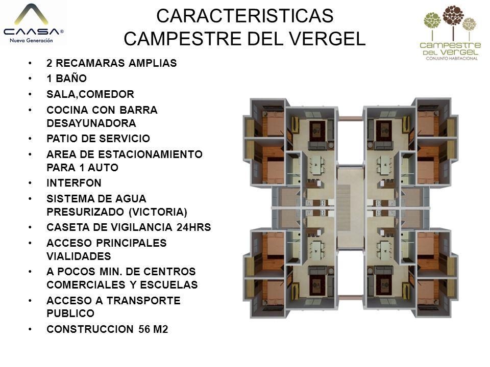 CARACTERISTICAS CAMPESTRE DEL VERGEL
