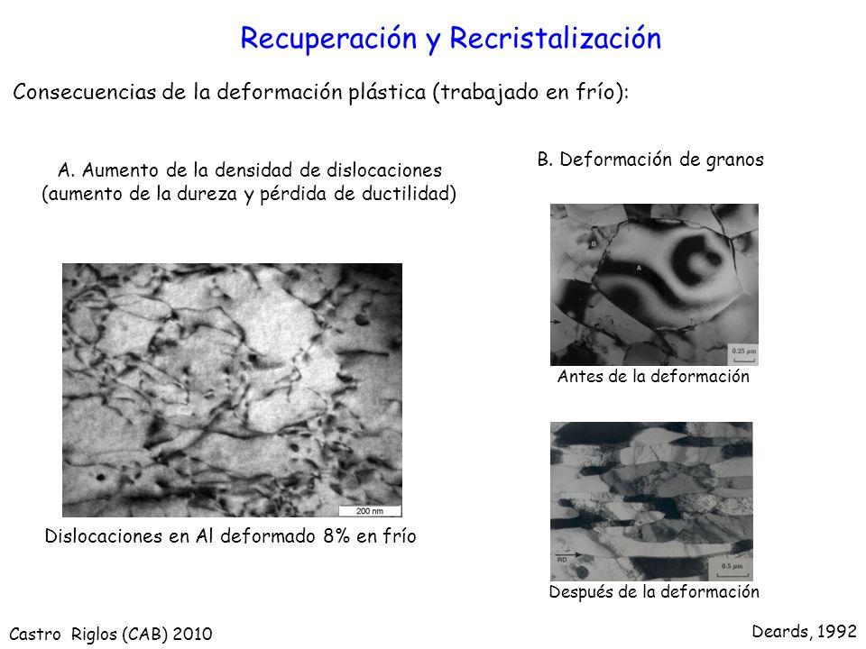 Recuperación y Recristalización