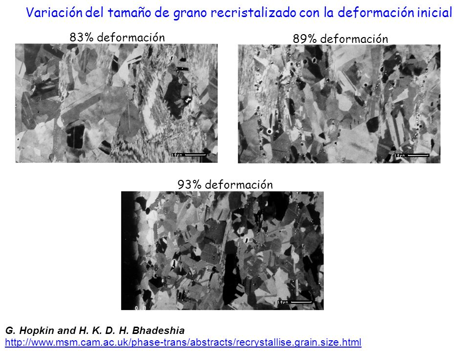 Variación del tamaño de grano recristalizado con la deformación inicial
