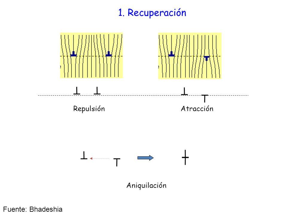 1. Recuperación Repulsión Atracción Aniquilación Fuente: Bhadeshia