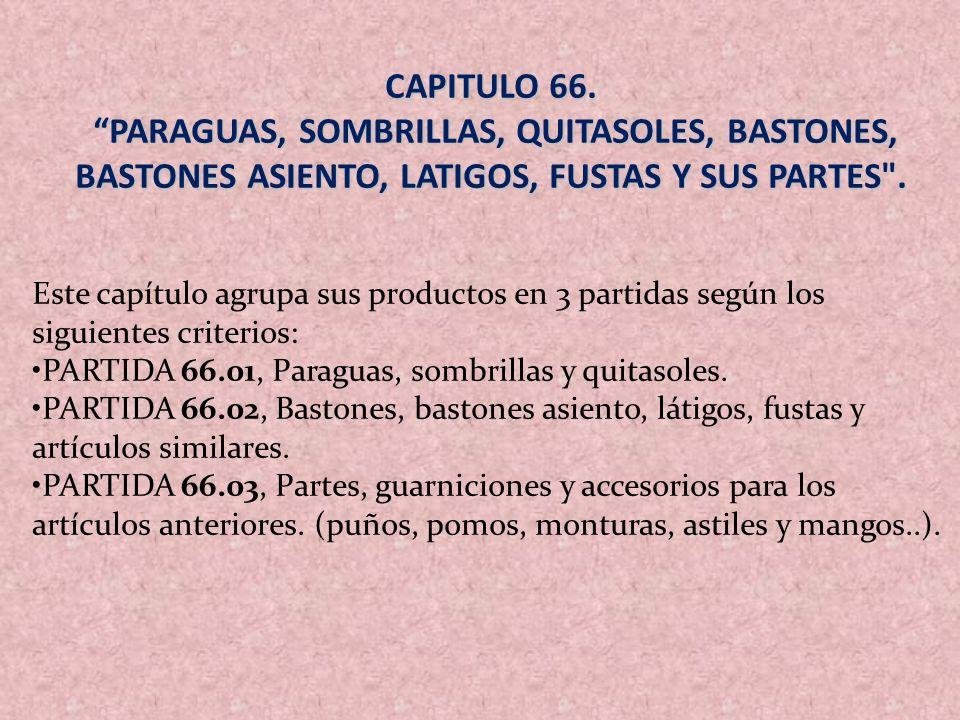 CAPITULO 66. PARAGUAS, SOMBRILLAS, QUITASOLES, BASTONES, BASTONES ASIENTO, LATIGOS, FUSTAS Y SUS PARTES .