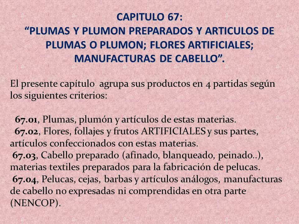 CAPITULO 67: PLUMAS Y PLUMON PREPARADOS Y ARTICULOS DE PLUMAS O PLUMON; FLORES ARTIFICIALES; MANUFACTURAS DE CABELLO .