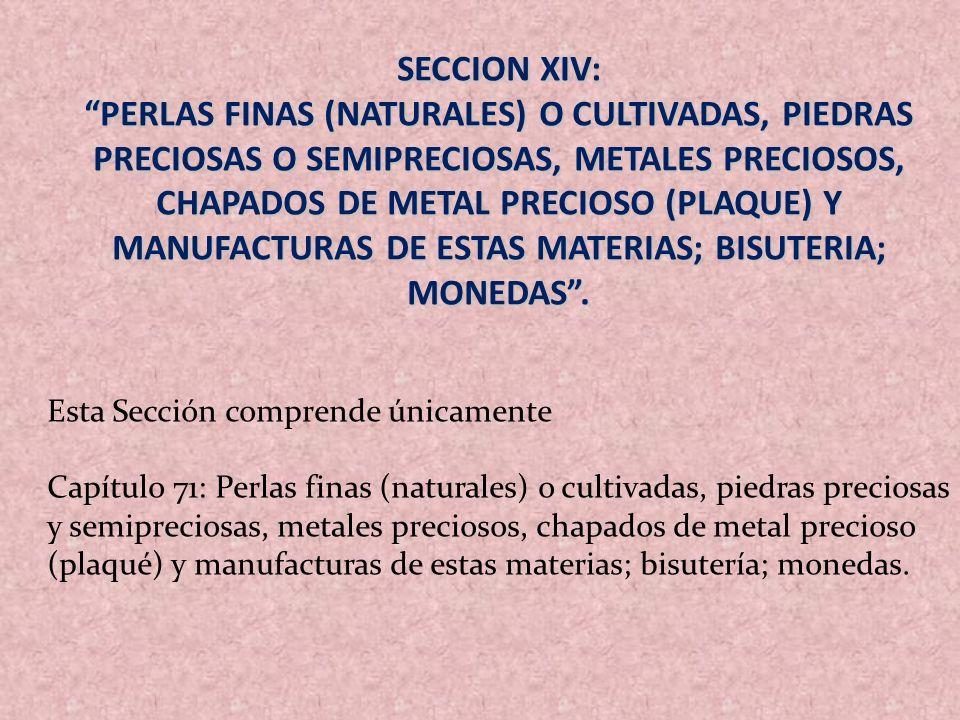 SECCION XIV: