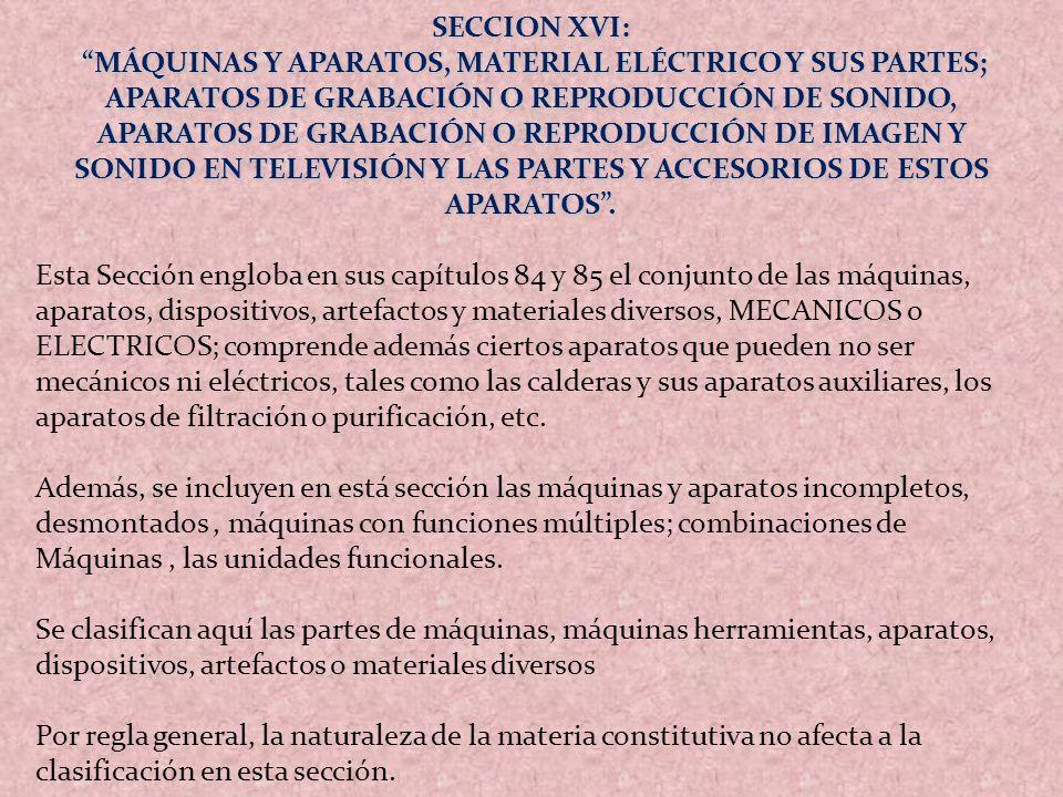 SECCION XVI: