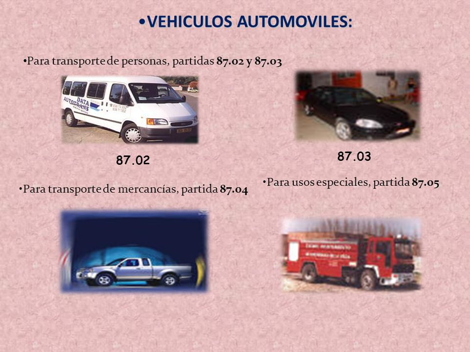 VEHICULOS AUTOMOVILES: