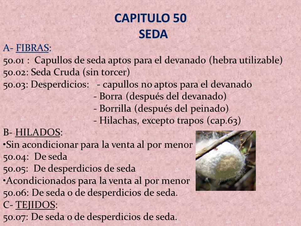 CAPITULO 50 SEDA A- FIBRAS: