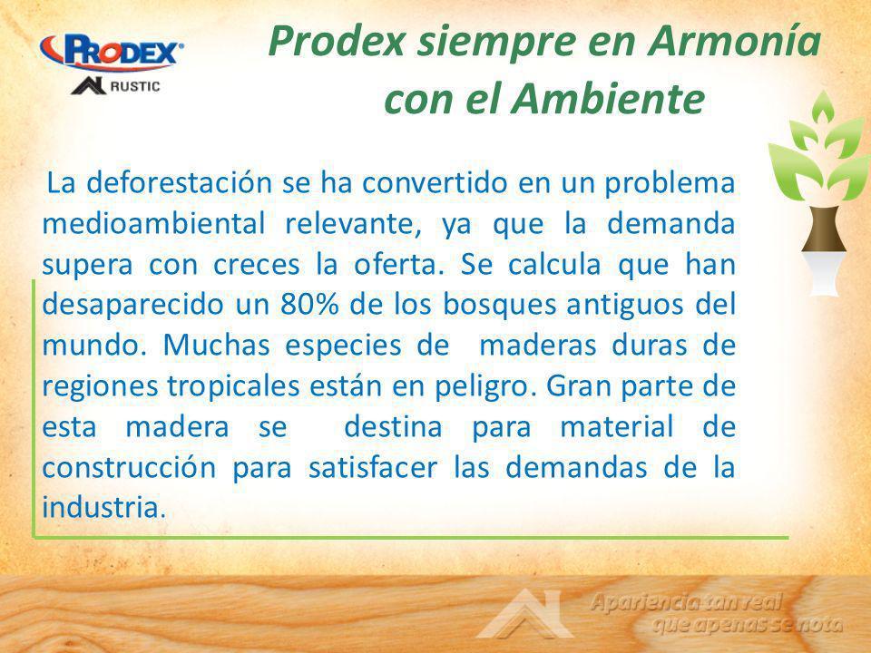 Prodex siempre en Armonía con el Ambiente