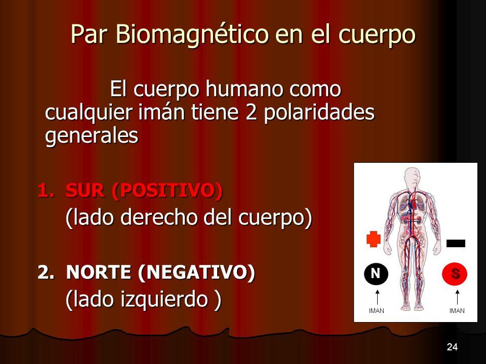 Par Biomagnético en el cuerpo