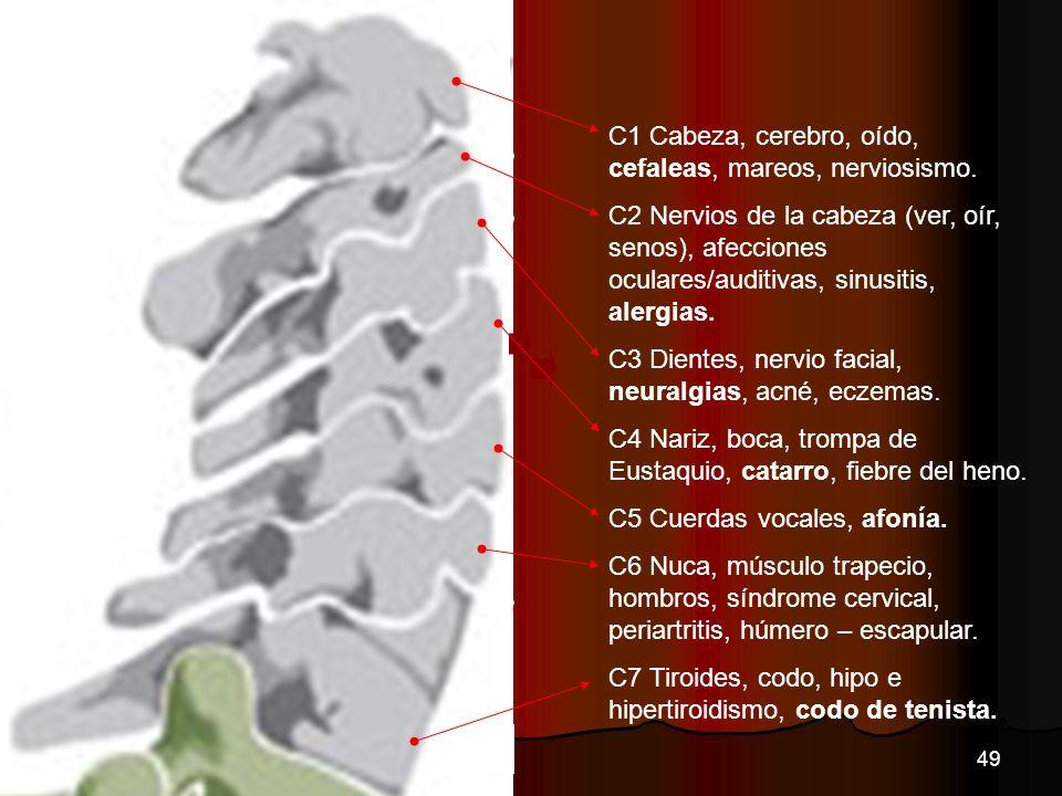 CVC C1 Cabeza, cerebro, oído, cefaleas, mareos, nerviosismo.