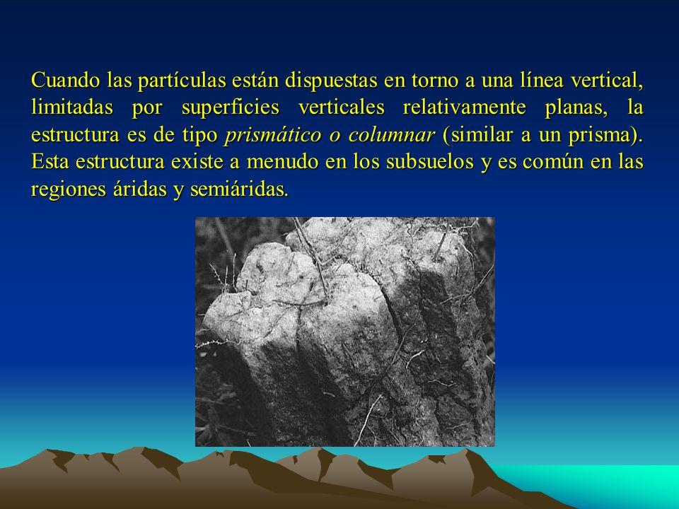 Cuando las partículas están dispuestas en torno a una línea vertical, limitadas por superficies verticales relativamente planas, la estructura es de tipo prismático o columnar (similar a un prisma).