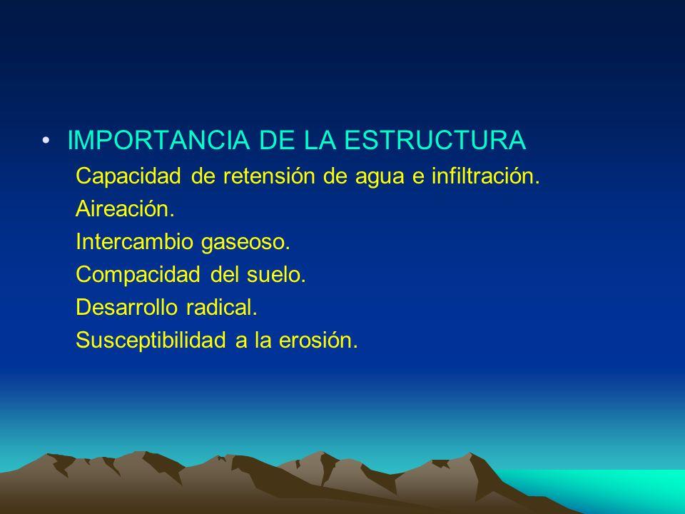 IMPORTANCIA DE LA ESTRUCTURA