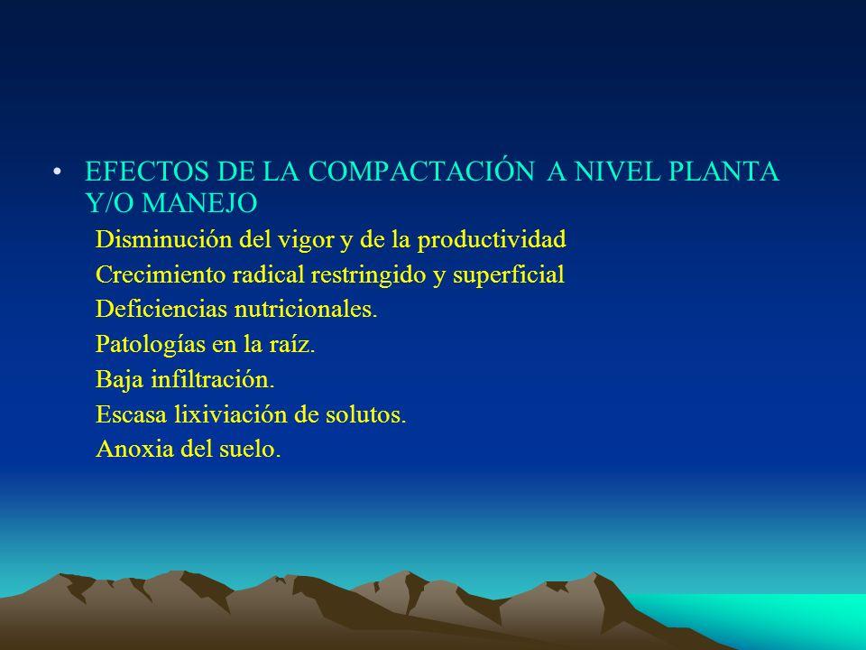 EFECTOS DE LA COMPACTACIÓN A NIVEL PLANTA Y/O MANEJO
