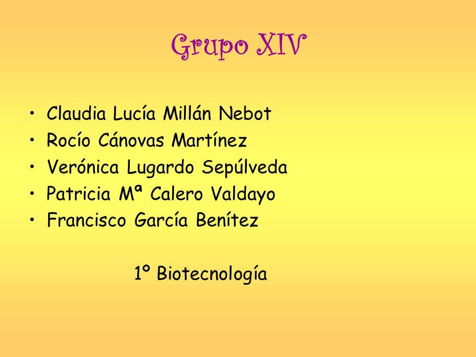 Grupo XIV Claudia Lucía Millán Nebot Rocío Cánovas Martínez