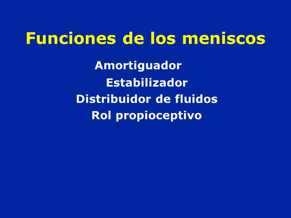 Funciones de los meniscos