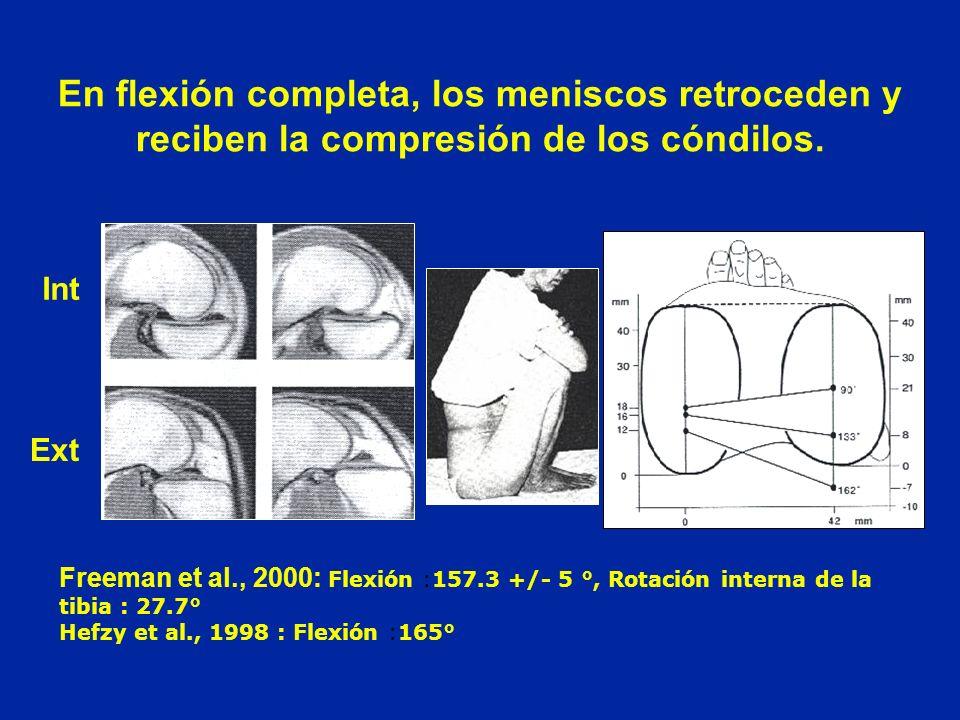 En flexión completa, los meniscos retroceden y reciben la compresión de los cóndilos.