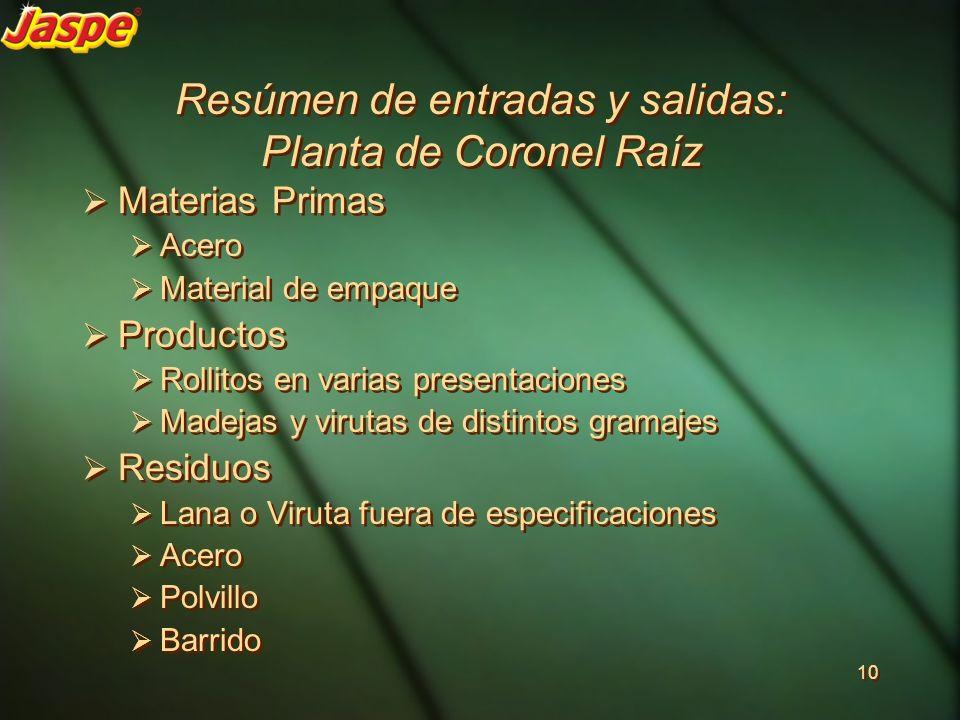 Resúmen de entradas y salidas: Planta de Coronel Raíz