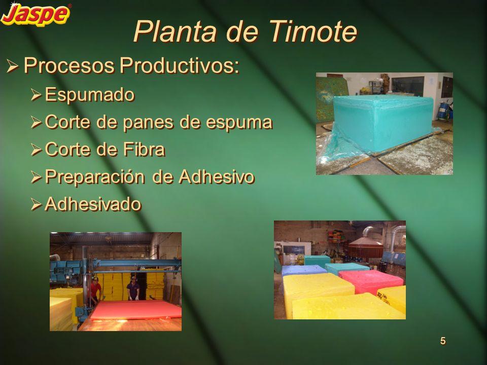 Planta de Timote Procesos Productivos: Espumado