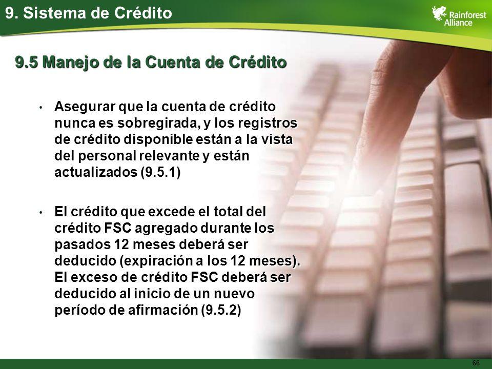 9.5 Manejo de la Cuenta de Crédito