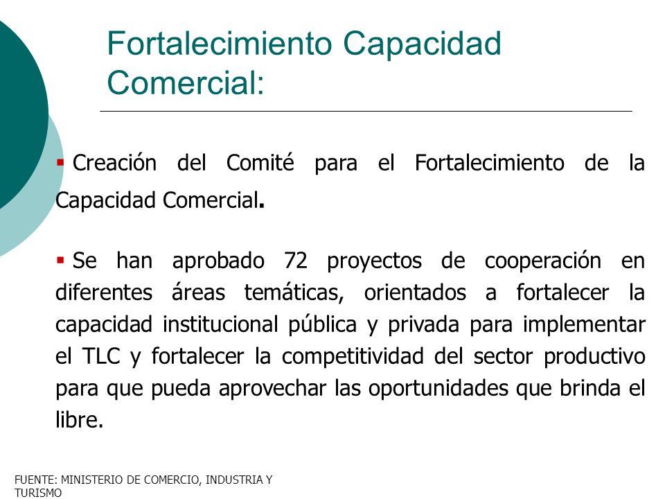 Fortalecimiento Capacidad Comercial:
