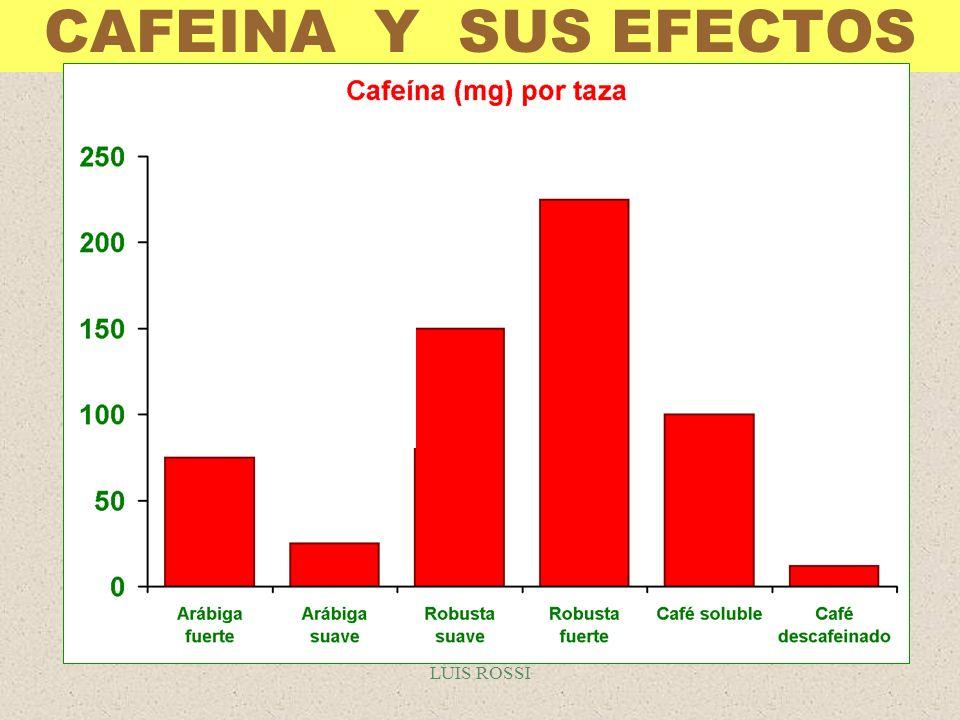 CAFEINA Y SUS EFECTOS LUIS ROSSI