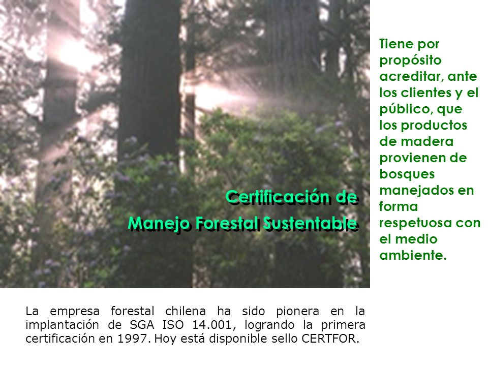 Manejo Forestal Sustentable