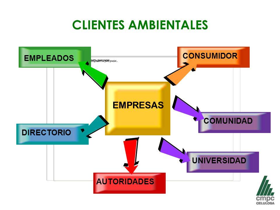 CLIENTES AMBIENTALES EMPRESAS CONSUMIDOR EMPLEADOS COMUNIDAD