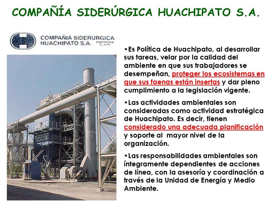 COMPAÑÍA SIDERÚRGICA HUACHIPATO S.A.