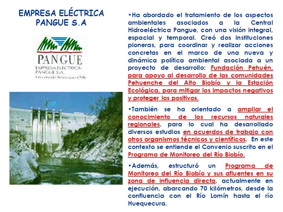 EMPRESA ELÉCTRICA PANGUE S.A