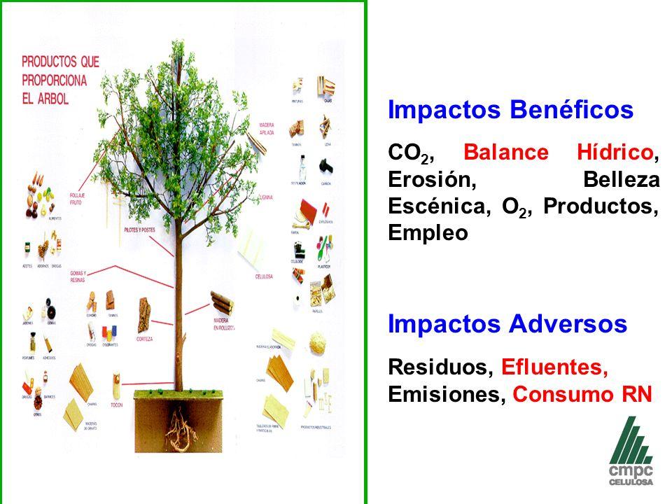 Impactos Benéficos Impactos Adversos