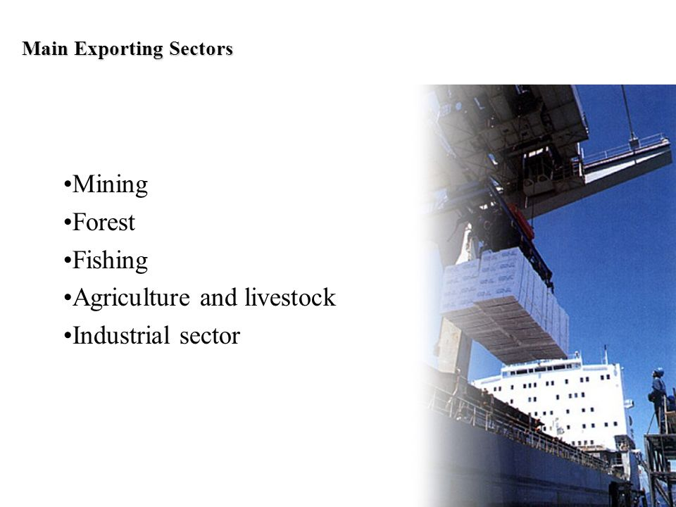 Main Exporting Sectors