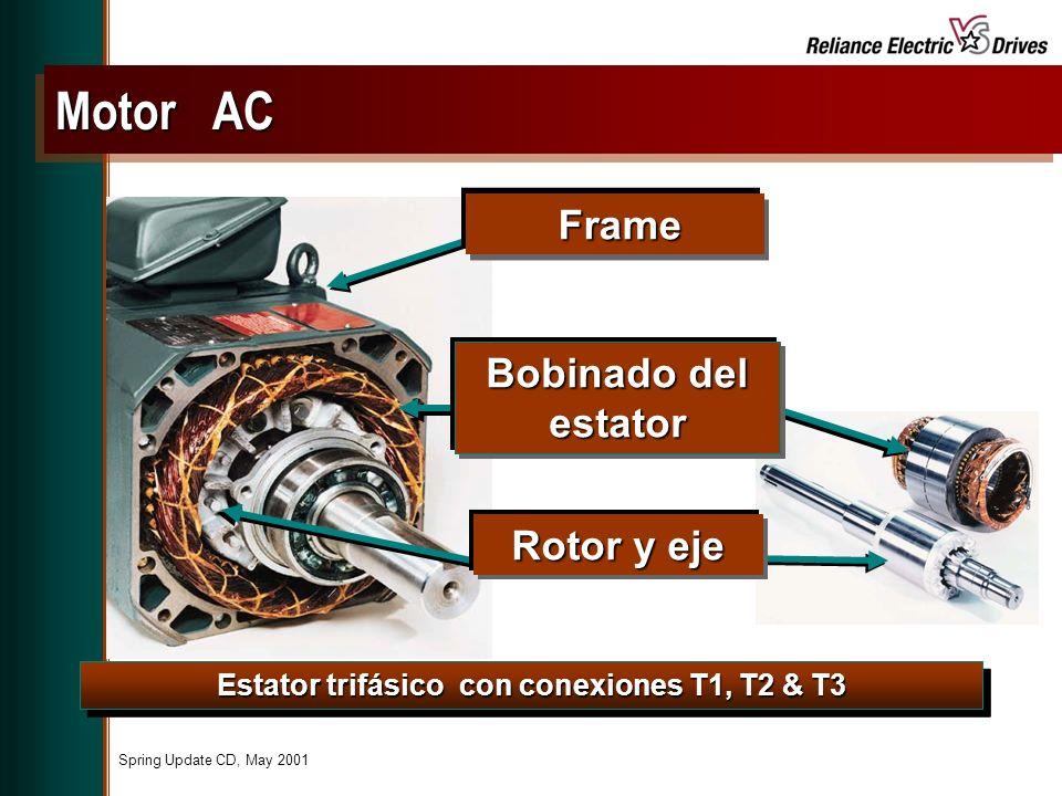 Estator trifásico con conexiones T1, T2 & T3