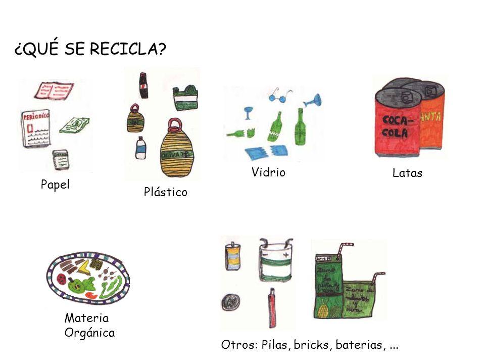 ¿QUÉ SE RECICLA Vidrio Latas Papel Plástico Materia Orgánica