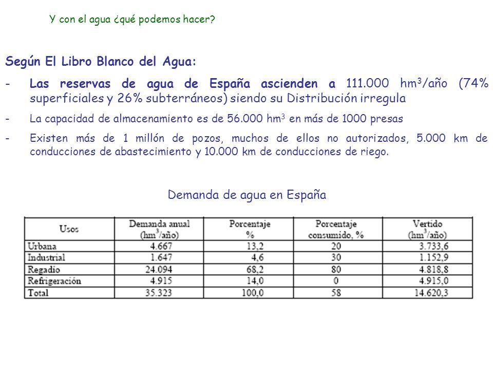 Demanda de agua en España