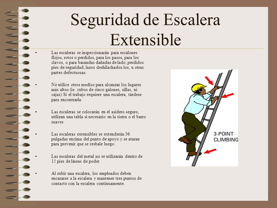 Seguridad de Escalera Extensible