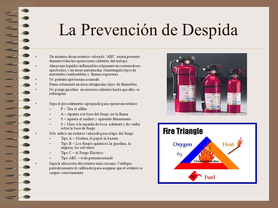 La Prevención de Despida